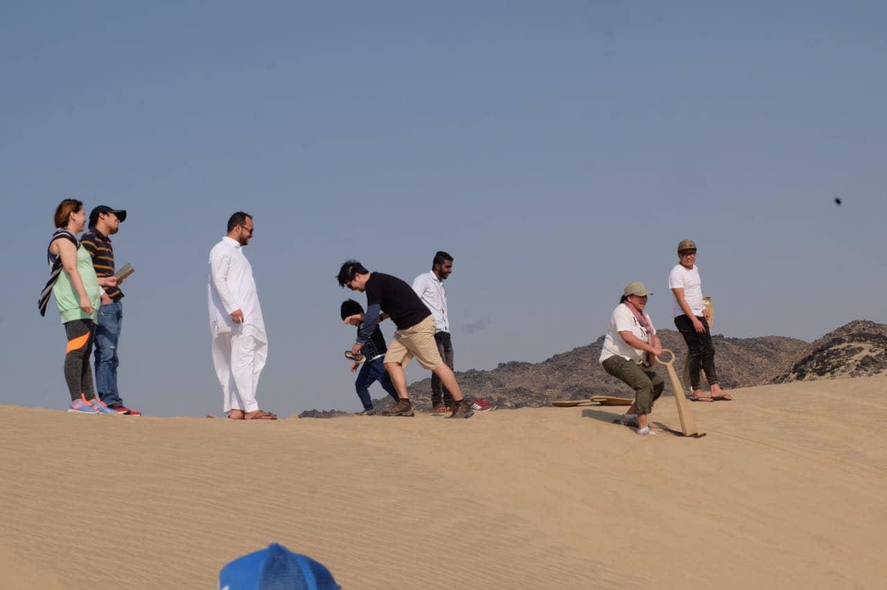 Standard Safari Desert